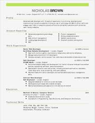 One Page Resume Layout Good Design E Page Resume Examples Pdf Format