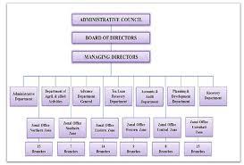 Branch Banking Organizational Structure Of Bdo Custom Paper