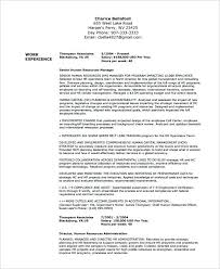 American Format Resume Format North American Professional Format