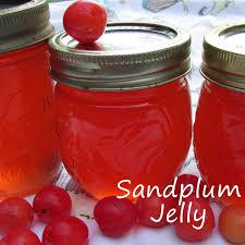 Certo Light Plum Jam Sandplum Jelly