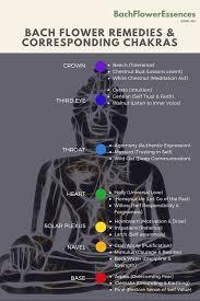 Bach Flower Remedies Chart Bach Flower Remedies Corresponding Chakras
