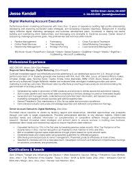 digital marketing resume example com digital marketing resume example com