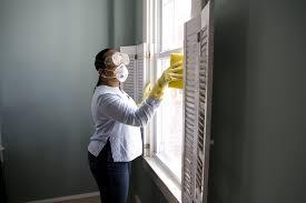 How To Get Rid Of Bathroom Mold Inspiration What Kills Mold Bleach Vs Vinegar