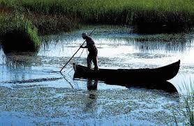 Imagini pentru cele mai frumoase delte din lume