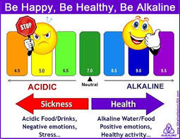 Acid Alkaline Water Chart Laminated Kangen Ph Chart Special Offer Juuva Alkaline