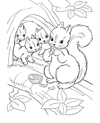 Small Picture Free Printable Squirrel Coloring Pages For Kids 29235