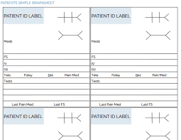 Med Sheets Printables The Ultimate Nursing Brain Sheet Database 33 Nurse Report Sheet