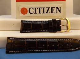 citizen watch band e820 s068941 caseback 23mm brown leather strap gldtn buckl