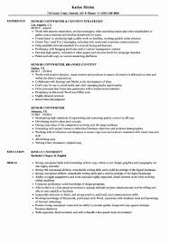 Copywriter Resume Samples Sample Ad Copywriter Resume Unique Senior Copywriter Resume Samples 19