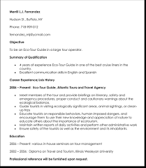 Sample Travel Management Resume Travel Job Resume Template 7 Samples For Travel Related Job Cv