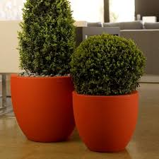 outdoor garden planters. Cup Shaped Large Outdoor Garden Planter At Homeinfatuation Com Planters O
