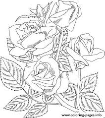744 x 1024 jpeg 78 кб. Realistic Rose Coloring Pages Printable