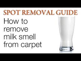 how to remove milk smell from carpet