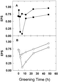 standard research paper in apa format