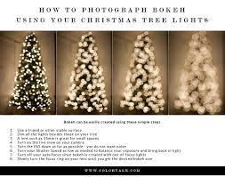 Photographing Christmas Tree Lights How To Photograph A Christmas Tree Photographer Tutorial