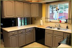 Home Depot Kitchen Inset Kitchen Cabinets Home Depot Monsterlune