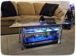 petco fish tanks. Brilliant Tanks Fish Tank Decorations Petco To Tanks P