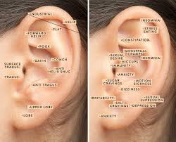 Ear Piercing Chart For Anxiety Are Your Trendy Ear Piercings Helping You On A Wellness Level