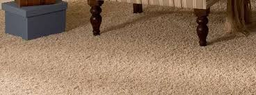 Carpet Cleaning Professional Carpet & Upholstery Cleaning by