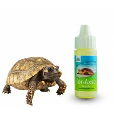 Kaplumbağa Bakım & Sağlık Ürünleri - GittiGidiyor