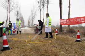 Piles of <b>pigs</b>: <b>Swine</b> fever outbreaks go unreported in rural China ...