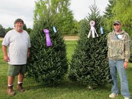 green valley christmas trees mosinee wi christmas tree farm wins 3rd state  title in row