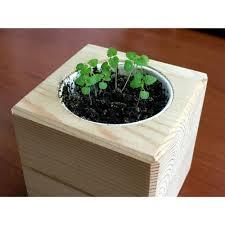 <b>Набор</b> для выращивания «Экокуб» P111/3432 купить в Москве ...