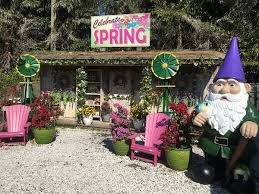 flamingo gardens nursery. Beautiful Nursery At Flamingo Road Nursery Our Easter Bunny Roams The Garden Center  Giving Away Candy And Posing For Photos Your Child Will Enjoy Coconut Painting With Gardens Nursery U