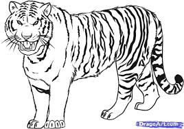 Small Picture Tiger Coloring Pages Free Printable Coloring Pages