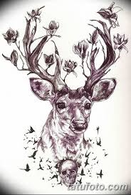 эскиз тату олень 23022019 140 Sketch Tattoo Deer Tatufotocom