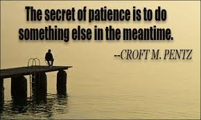 Patience Is A Virtue Quote Adorable Patience Quotes