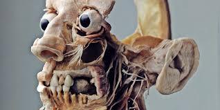The Plastinarium of Dr. von Hagens WIRED