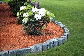 menards garden center plants landscaping