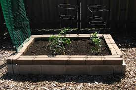 build a cinder block raised bed