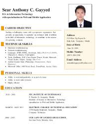 Awesome Objective For Information Technology Resume Pictures