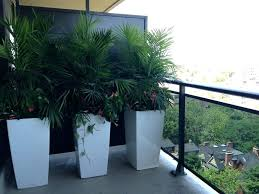 full size of big outdoor pots nz large white hamilton plants plant metal for kitchen