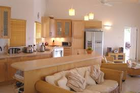 Kitchen With Living Room Design Kitchen To Living Room Designs Home Design Ideas