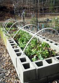 1000 images about concrete raised bed gardening on with regard to raised
