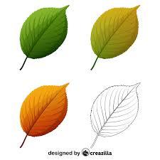apple tree leaves vector free