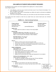 Resume Objective Section 6 Affidavit What To Write In Objectives Of
