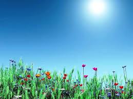 Free Spring Backgrounds Desktop ...