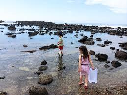Abalone Cove Shoreline Park Tide Pools Rancho Palos Verdes