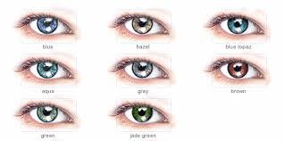 Shop Online Cooper Vision Expressions Color Lenses 1 Lenses