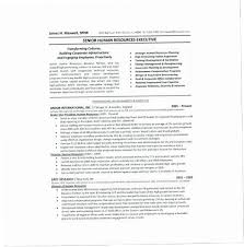 1 Page Resume Fascinating How To Write A One Page Resume PUKY How To Write A One Page Resume