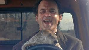 groundhog day essay groundhog day movie recurrence salvation and  growing up groundhog the horror and fantasy of groundhog day growing up groundhog the horror and