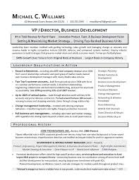 Resume Sample For Business Development Executive
