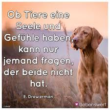 Sprüche Für Tierliebhaber Zitate Und Sprüche Für Katzen Und Hunde