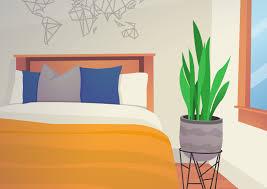 Pflanzen Im Schlafzimmer Schädlich Oder Fördernd