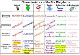 Six Kingdoms Characteristics Chart The Six Kingdoms Thinglink Taxonomy Biology Teaching