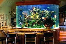 fish decorations for home aquarium decoration ideas freshwater homemade tank diy decoratio